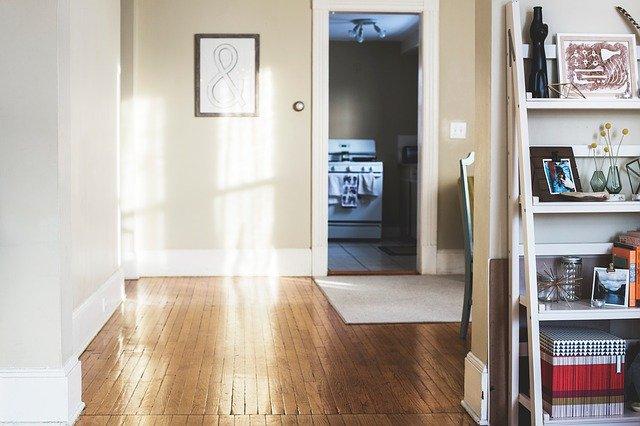 dveře v interiéru